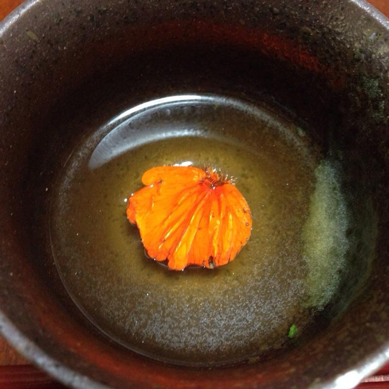 キンレンカの花びら